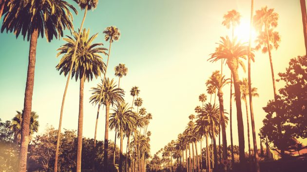Los Angeles & Palm Springs Ladies Golf & Shopping Tour