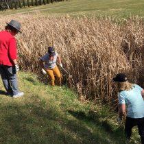 Girls weekend Beginner ladies golf