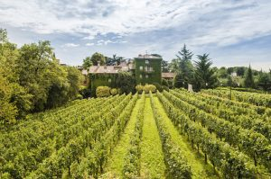Franciacorta, Italy's sparkling wine region