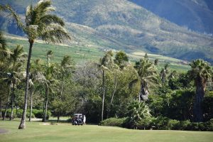 Golf & Tours Hawaii